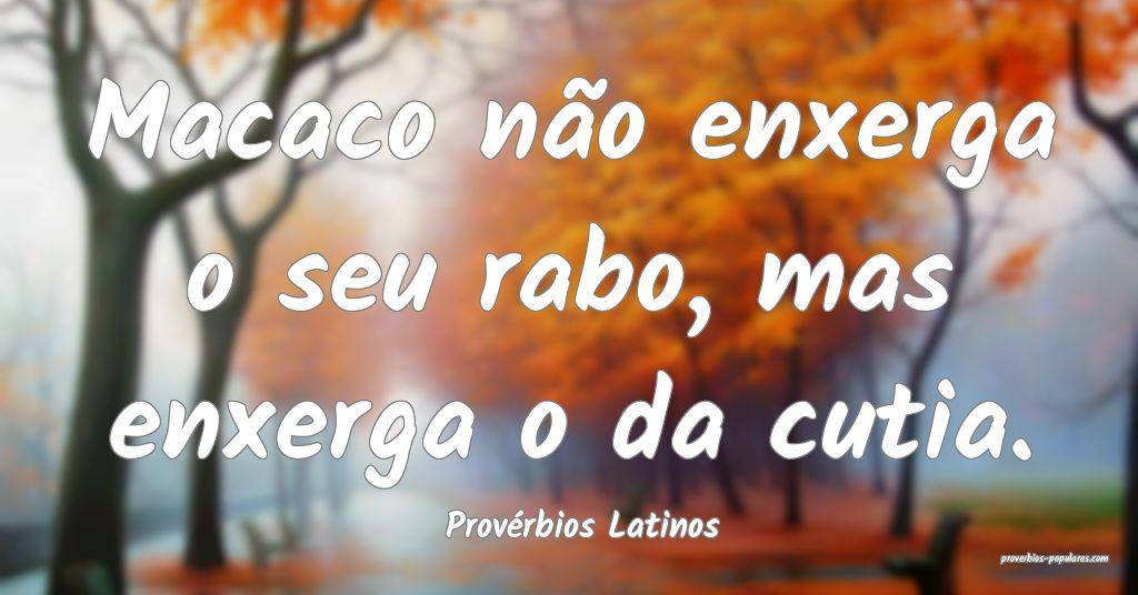 Provérbios Latinos - Macaco não enxerga o seu ra ...