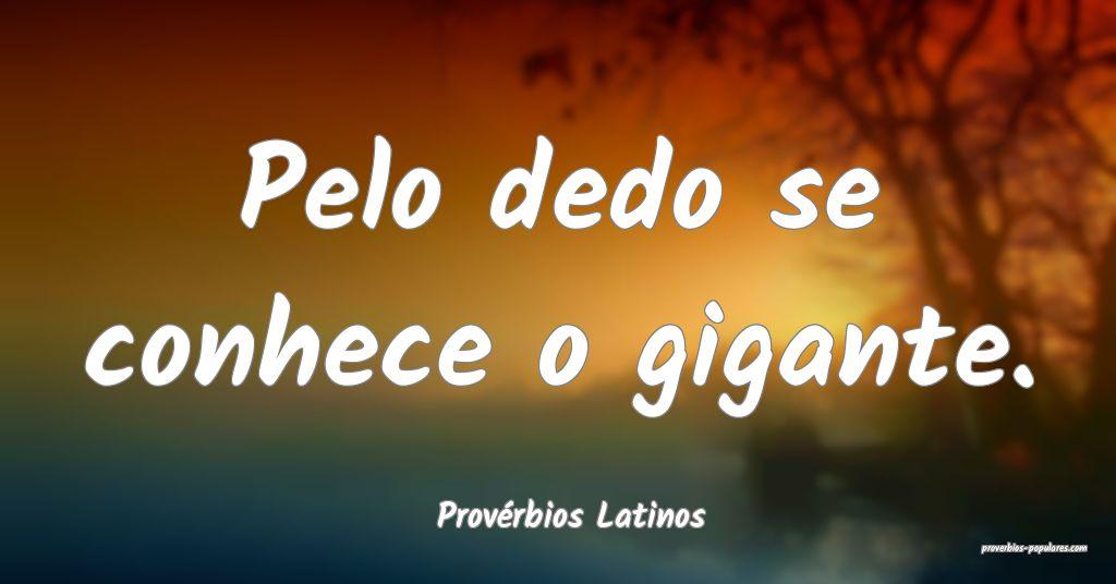 Provérbios Latinos - Pelo dedo se conhece o gigan ...