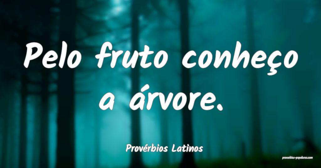 Provérbios Latinos - Pelo fruto conheço a árvor ...
