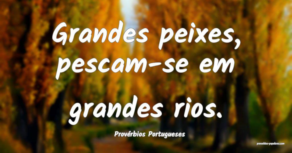Provérbios Portugueses - Grandes peixes, pescam-s ...
