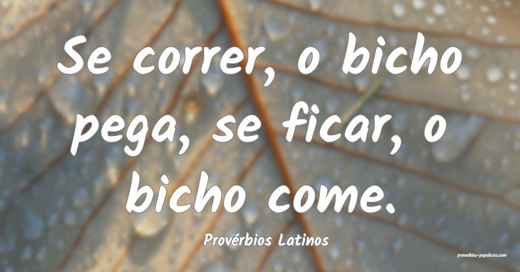 Provérbios Latinos - Se correr, o bicho pega, se  ...