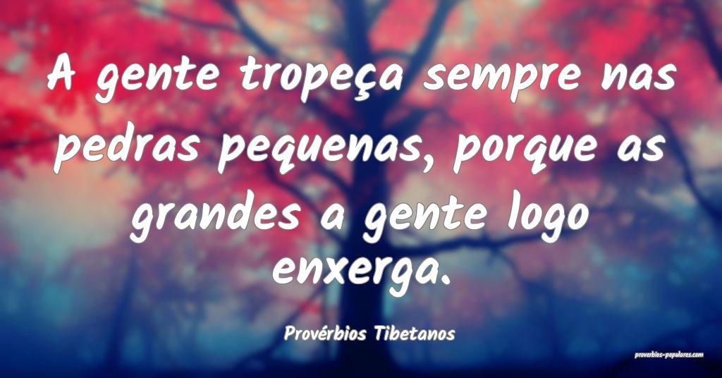 Provérbios Tibetanos - A gente tropeça sempre na ...