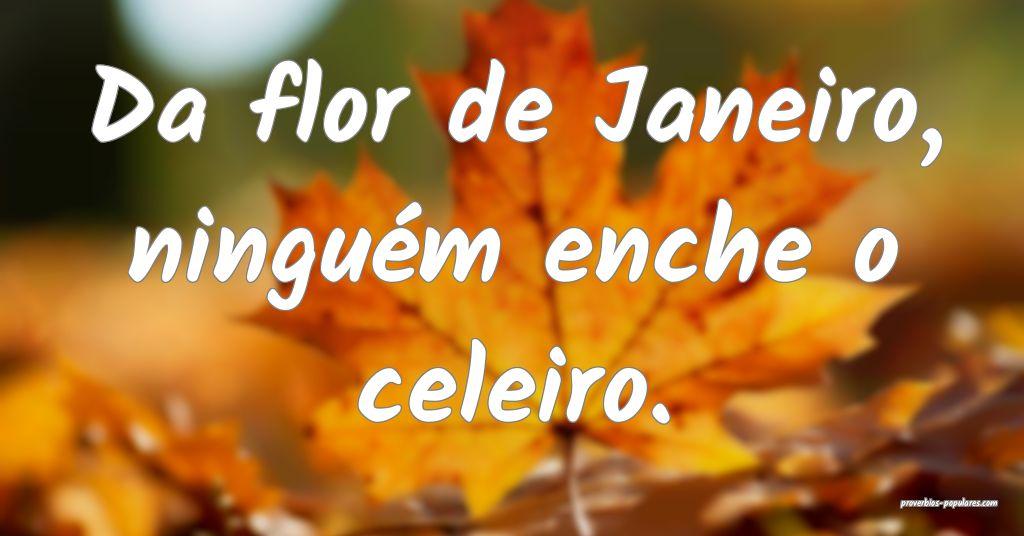 Da flor de Janeiro, ninguém enche o celeiro.  ...