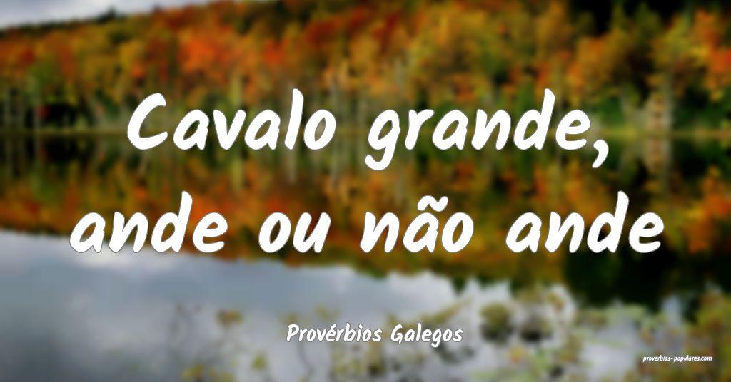 Provérbios Galegos - Cavalo grande, ande ou não  ...