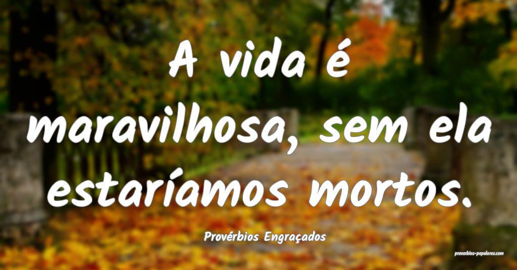 Provérbios Engraçados - A vida é maravilhosa, s ...