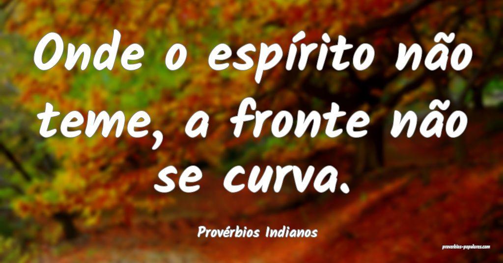 Provérbios Indianos - Onde o espírito não teme, ...