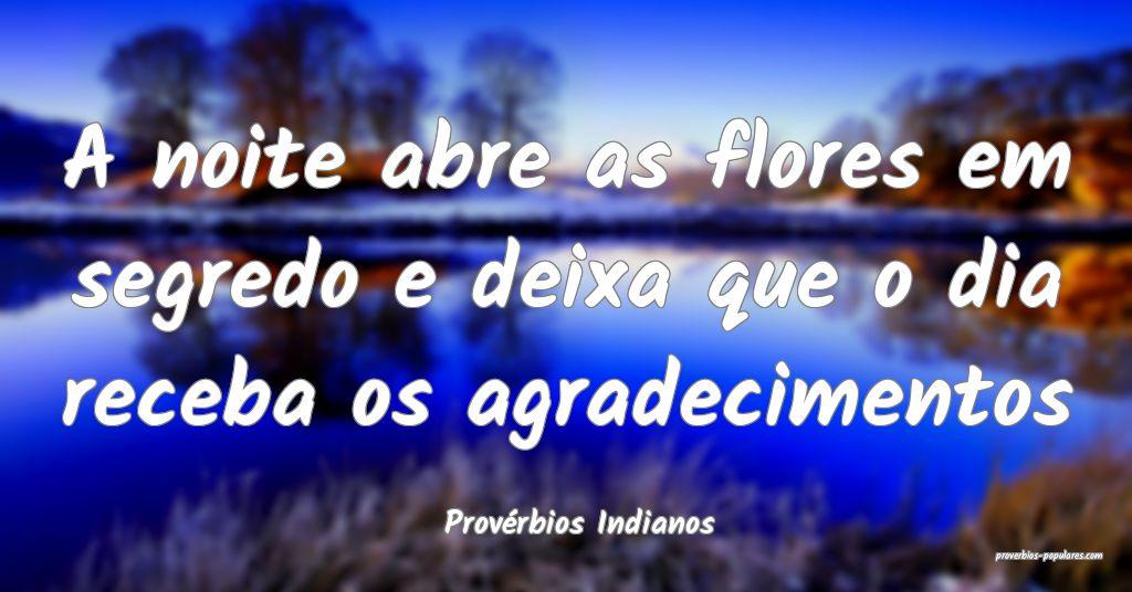 Provérbios Indianos - A noite abre as flores em s ...