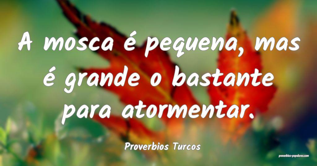 Proverbios Turcos - A mosca é pequena, mas é gra ...