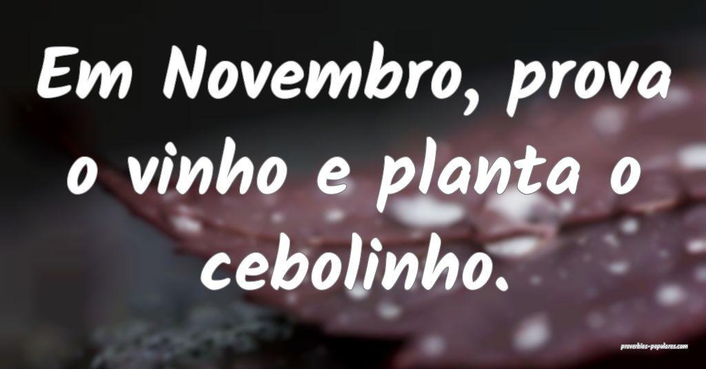 Em Novembro, prova o vinho e planta o cebolinho.  ...