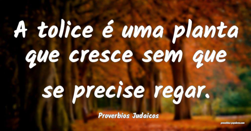 Proverbios Judaicos - A tolice é uma planta que c ...