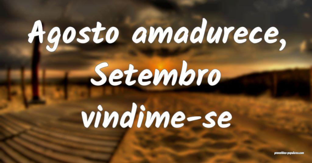 Agosto amadurece, Setembro vindime-se ...