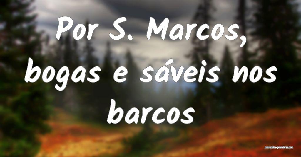 Por S. Marcos, bogas e sáveis nos barcos ...