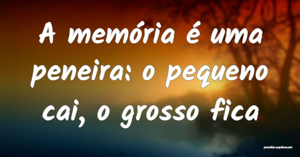 A memória é uma peneira: o pequeno cai, o grosso ...