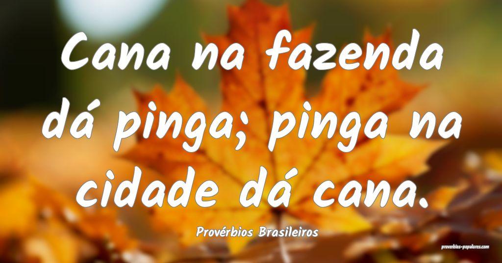 Provérbios Brasileiros - Cana na fazenda dá ping ...