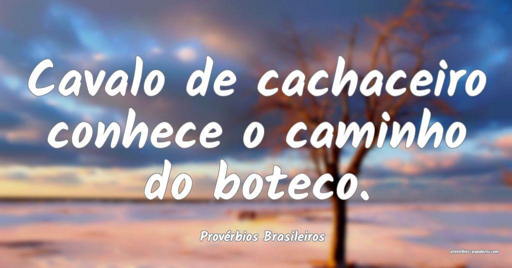 Provérbios Brasileiros - Cavalo de cachaceiro con ...
