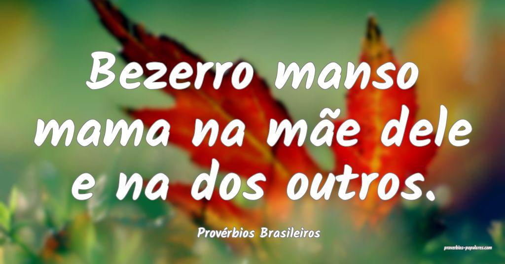 Provérbios Brasileiros - Bezerro manso mama na m� ...