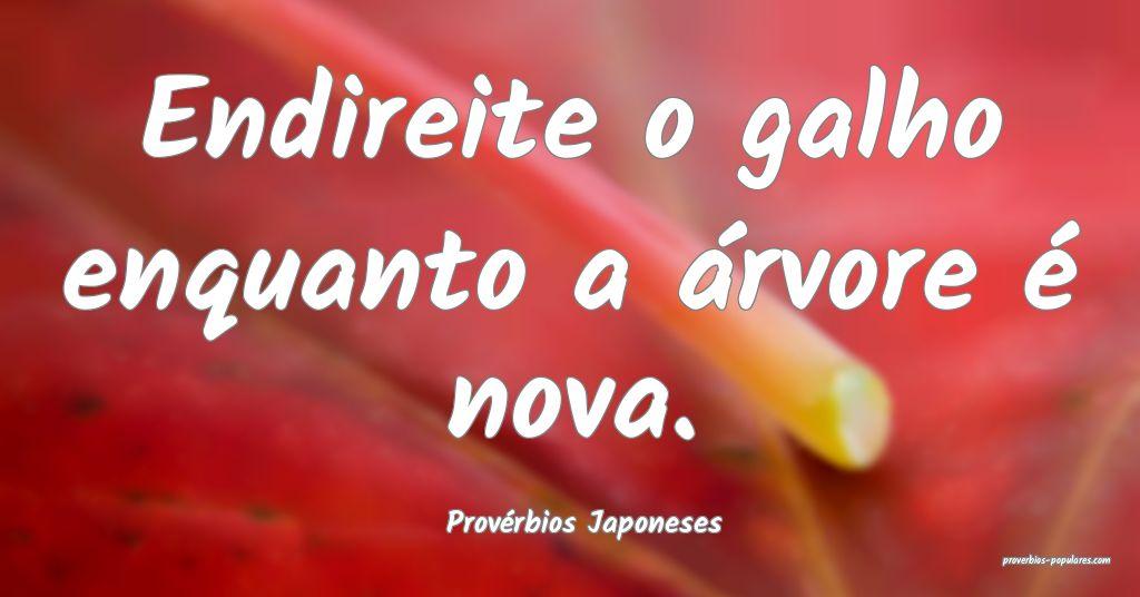 Provérbios Japoneses - Endireite o galho enquanto ...
