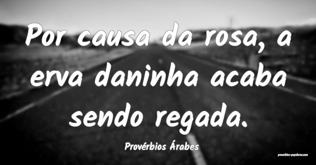 Provérbios Árabes - Por causa da rosa, a erva da ...