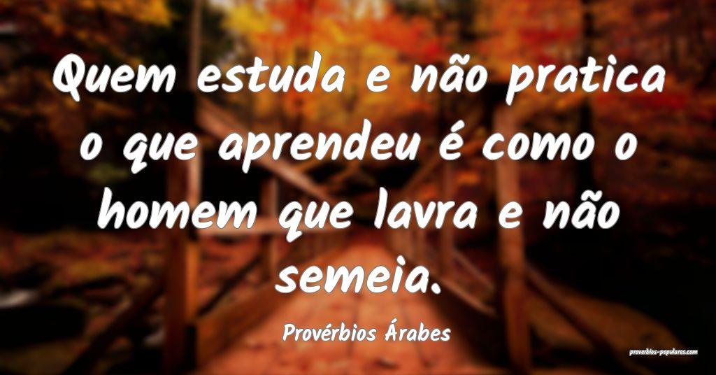 Provérbios Árabes - Quem estuda e não pratica o ...