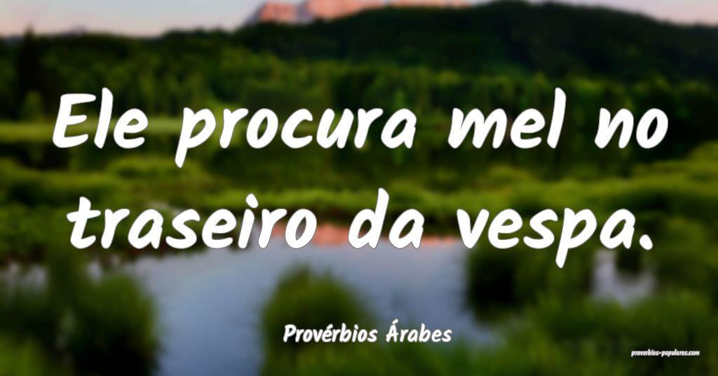 Provérbios Árabes - Ele procura mel no traseiro  ...