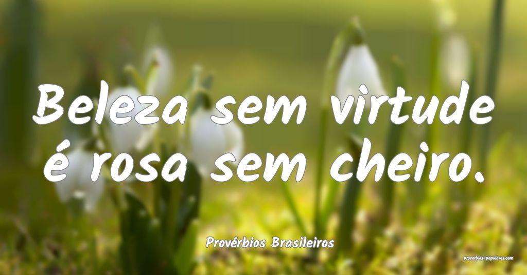 Provérbios Brasileiros - Beleza sem virtude é ro ...