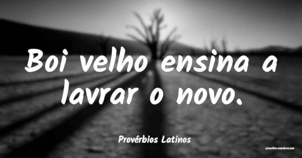 Provérbios Latinos - Boi velho ensina a lavrar o  ...