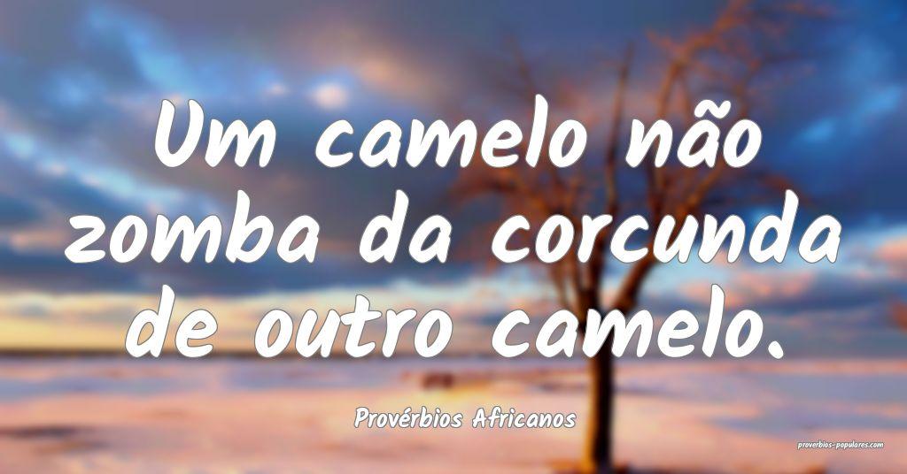 Provérbios Africanos - Um camelo não zomba da co ...