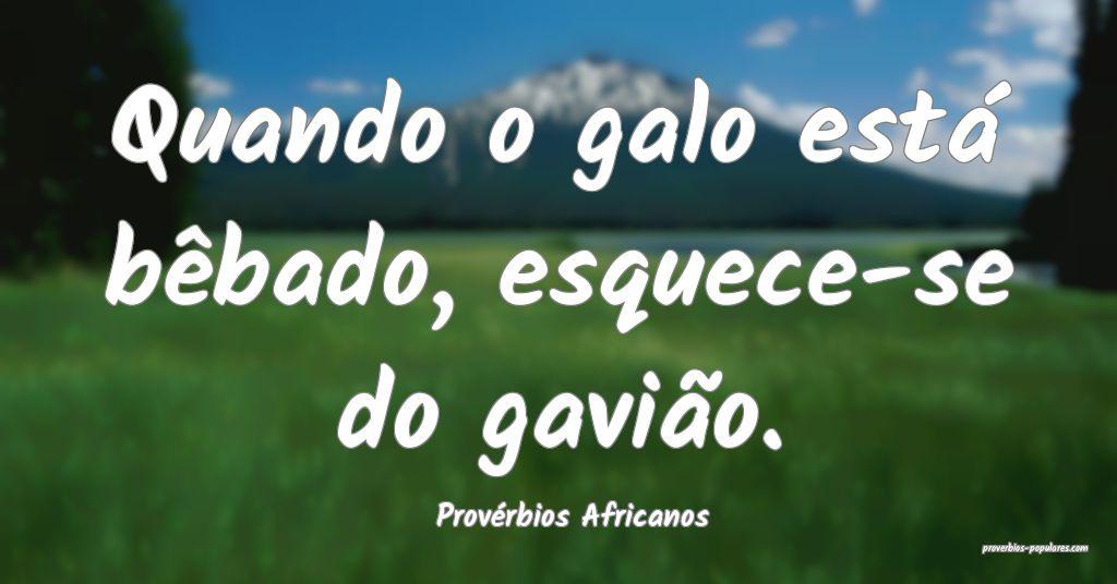 Provérbios Africanos - Quando o galo está bêbad ...