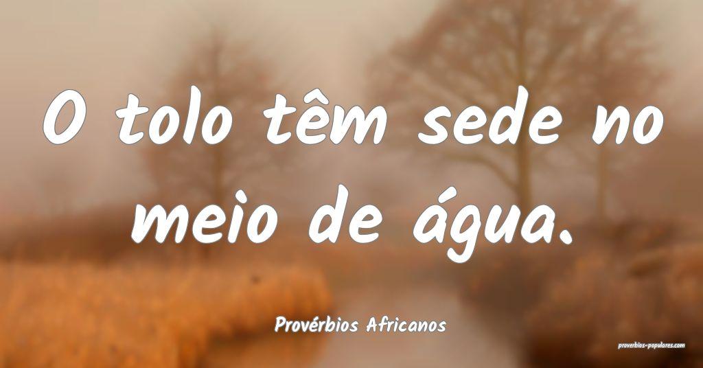 Provérbios Africanos - O tolo têm sede no meio d ...