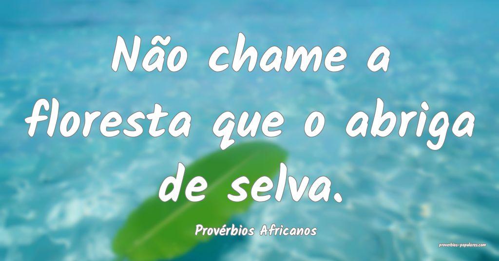 Provérbios Africanos - Não chame a floresta que  ...