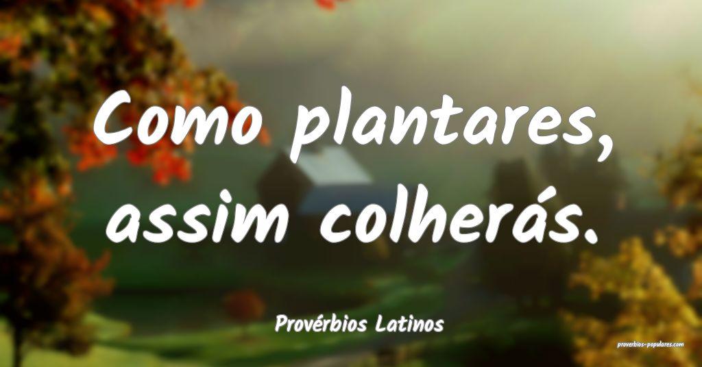 Provérbios Latinos - Como plantares, assim colher ...