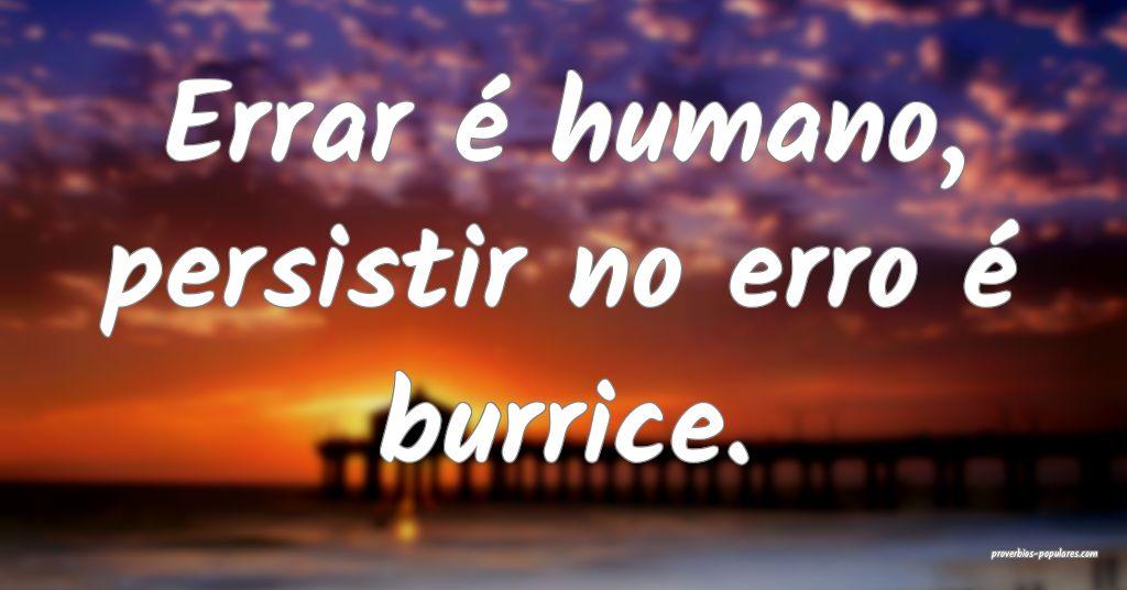 Errar é humano, persistir no erro é burrice.  ...