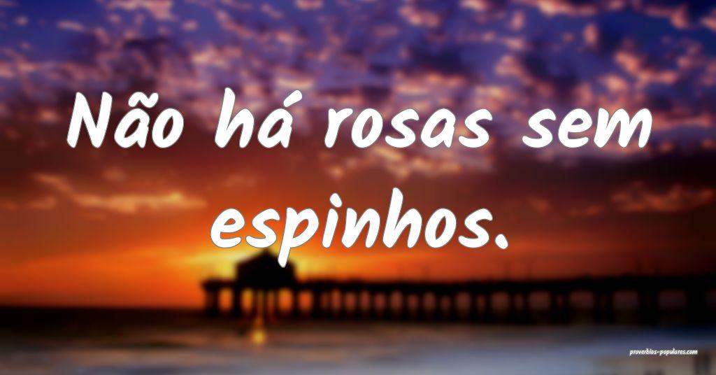 Não há rosas sem espinhos.   ...